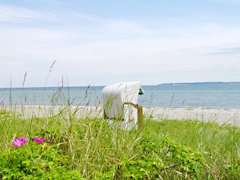Strandkob mit Meerblick Ostsee